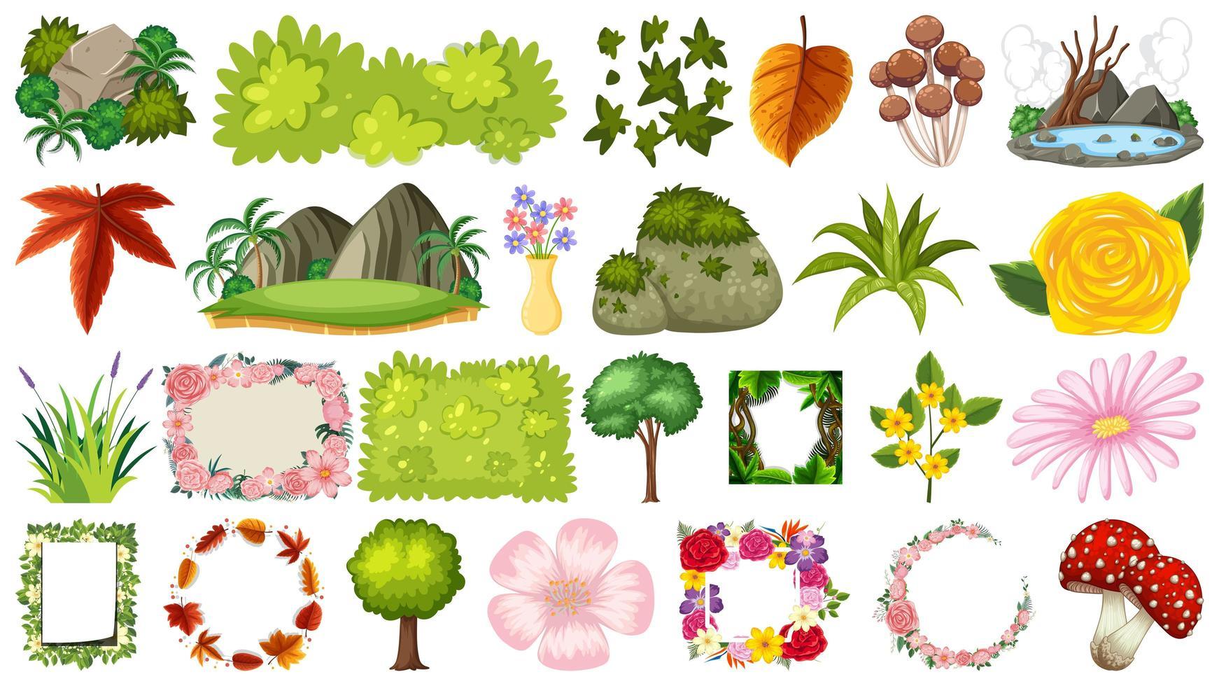 Conjunto de plantas e flores vetor