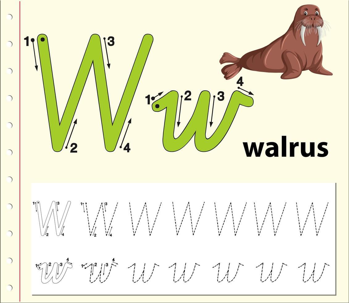 Arbeitsblätter für Buchstaben-W-Tracing-Alphabete vektor