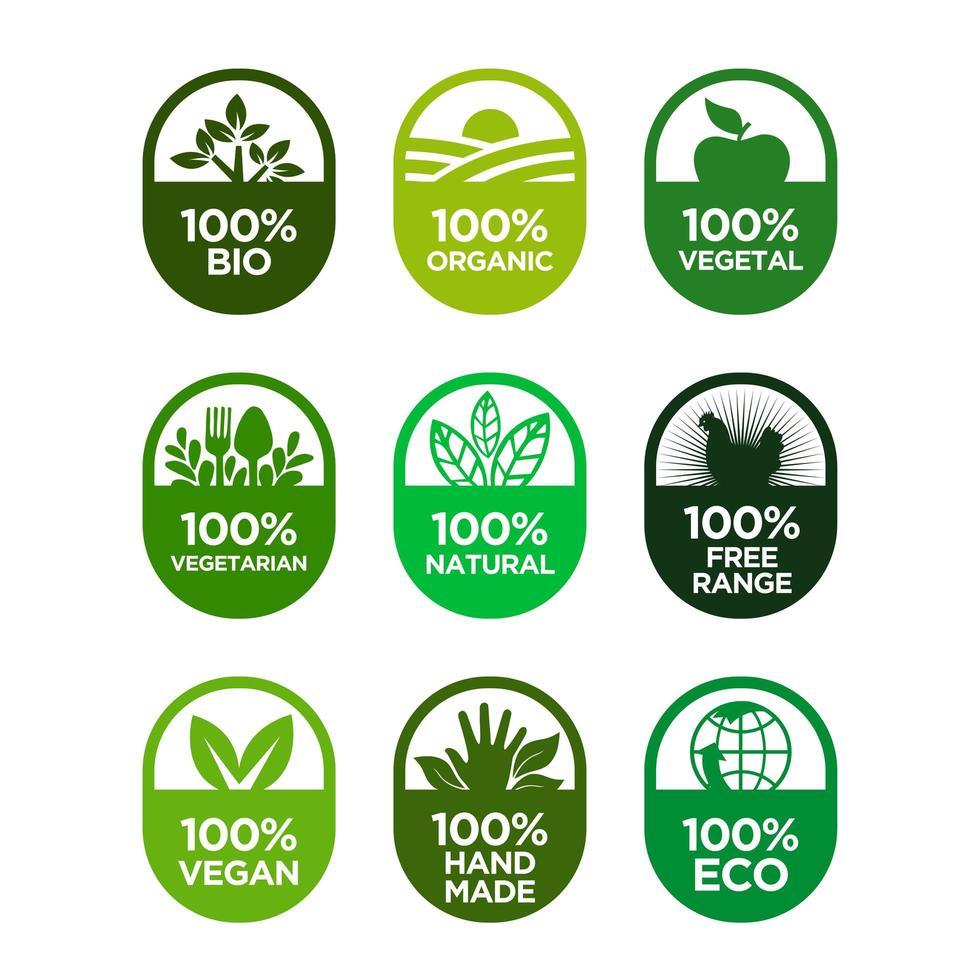 Set di icone di cibo sano e vita sana. vettore