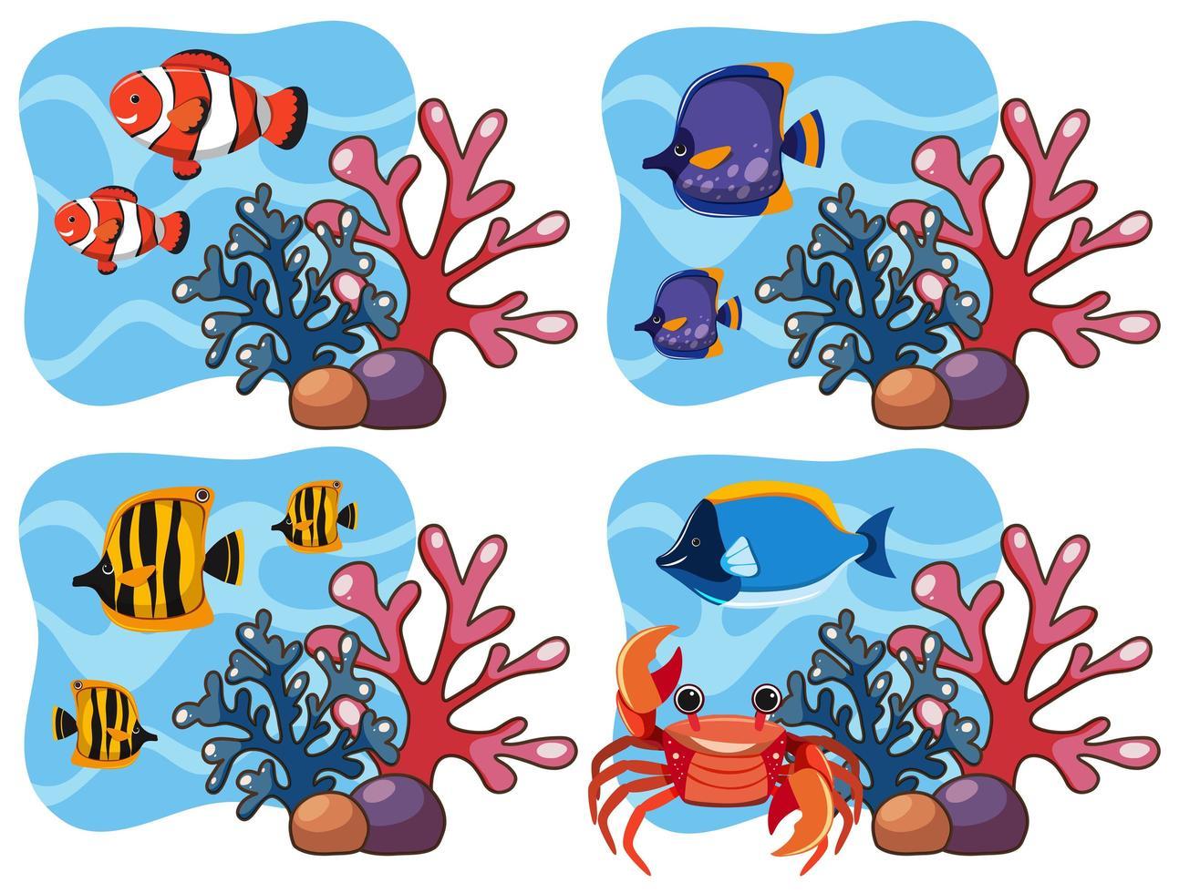 Um conjunto de corais e peixes vetor