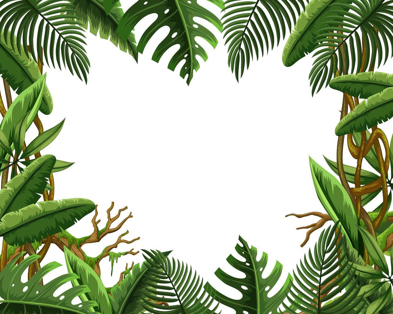 Blank jungle leave frame vector