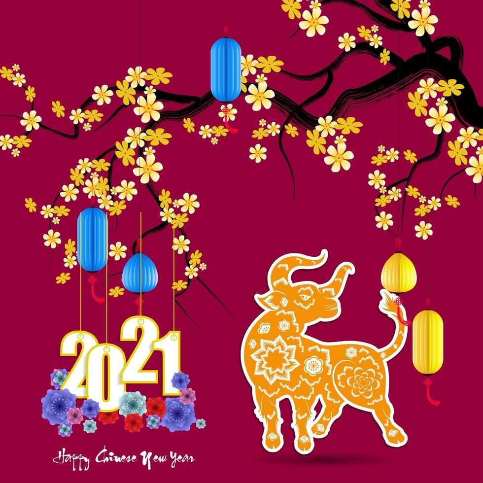 Capodanno cinese 2021 anni con fiori di albicocca e bue vettore