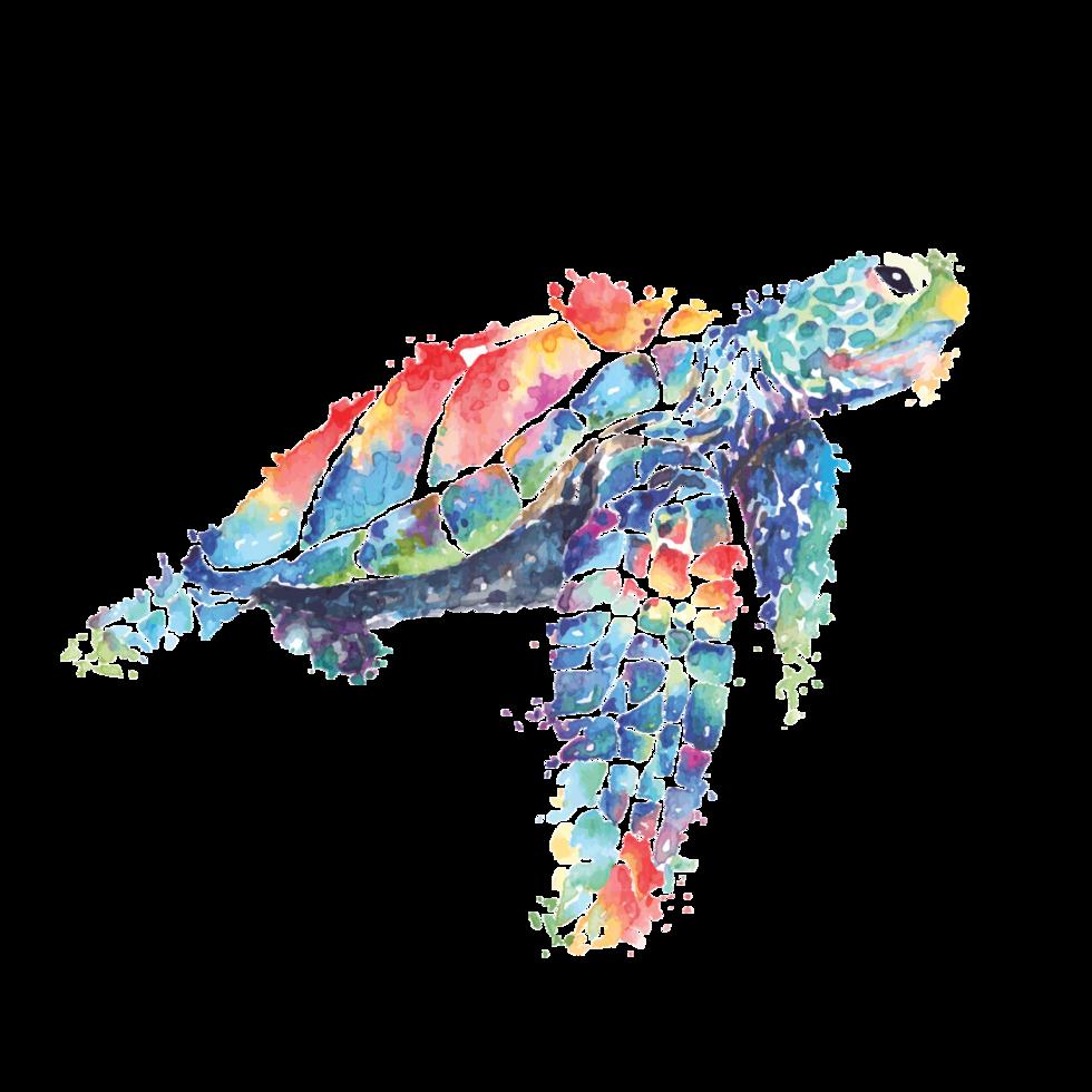Meeresschildkröte in Aquarell gemalt vektor