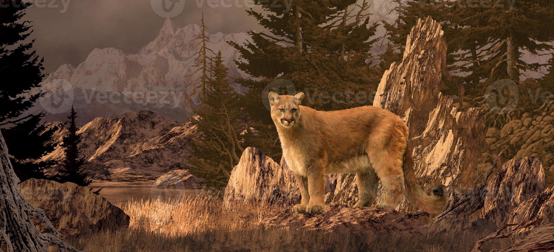 León de montaña foto