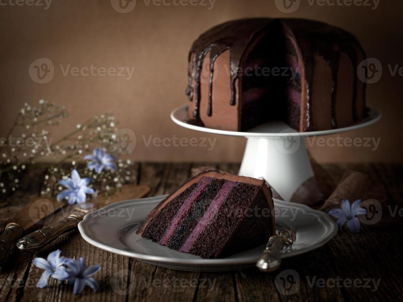 vintage chocolate cake with blueberry cream photo