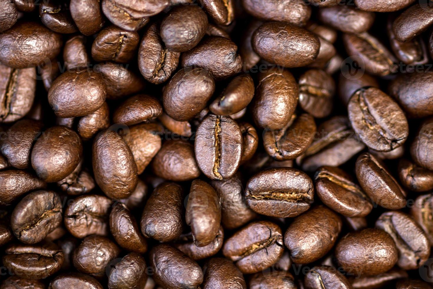 grãos de café torrados. foto