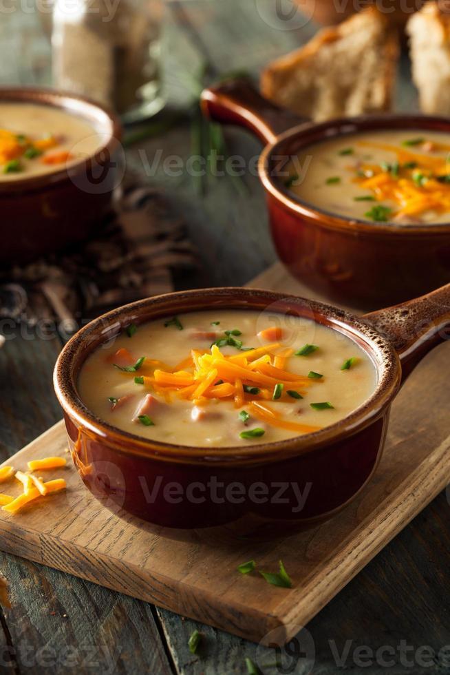 sopa de queso y cerveza casera foto