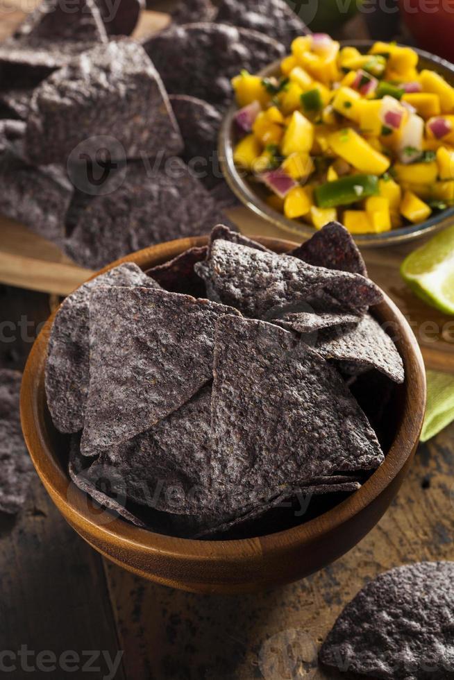 Homemade Organic Blue Corns Chips photo