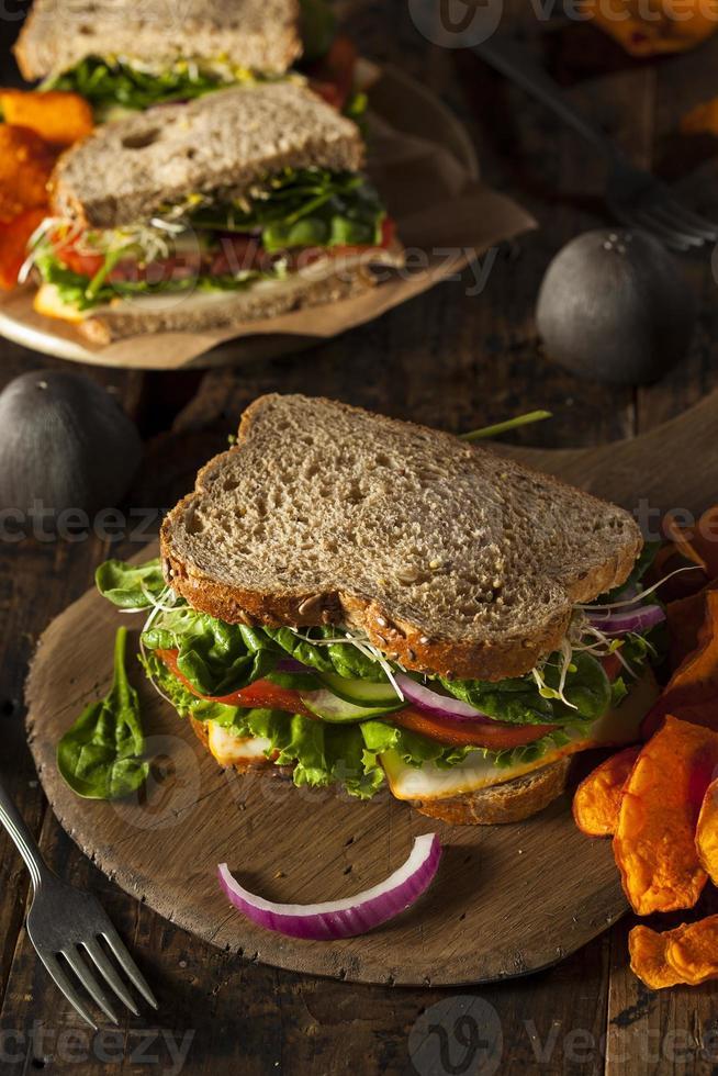 sandwich vegetariano saludable vegetariano foto