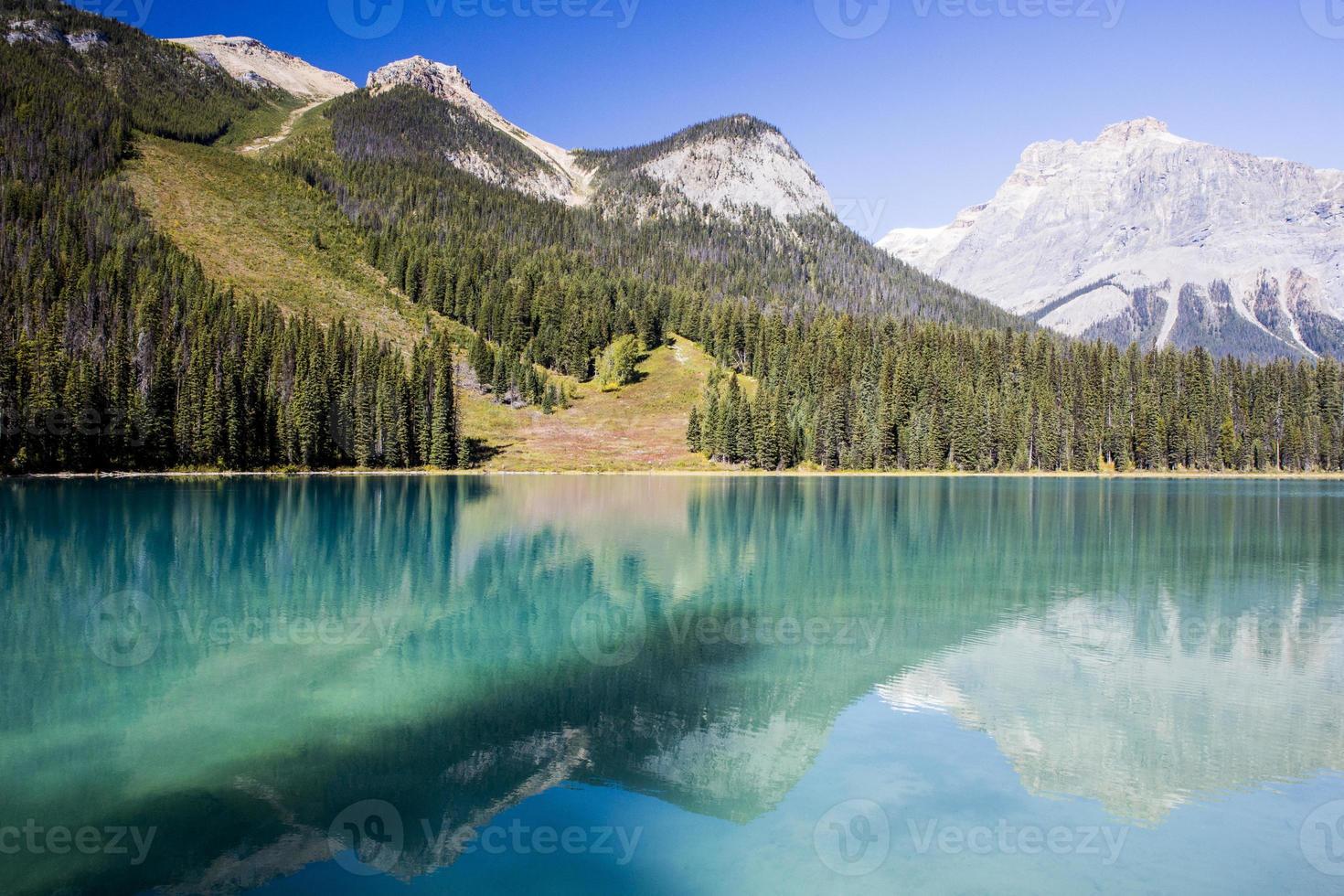 Emerald Lake, Yoho National Park, British Columbia, Canada photo