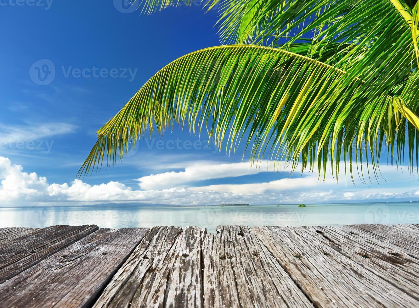 hermosa playa foto