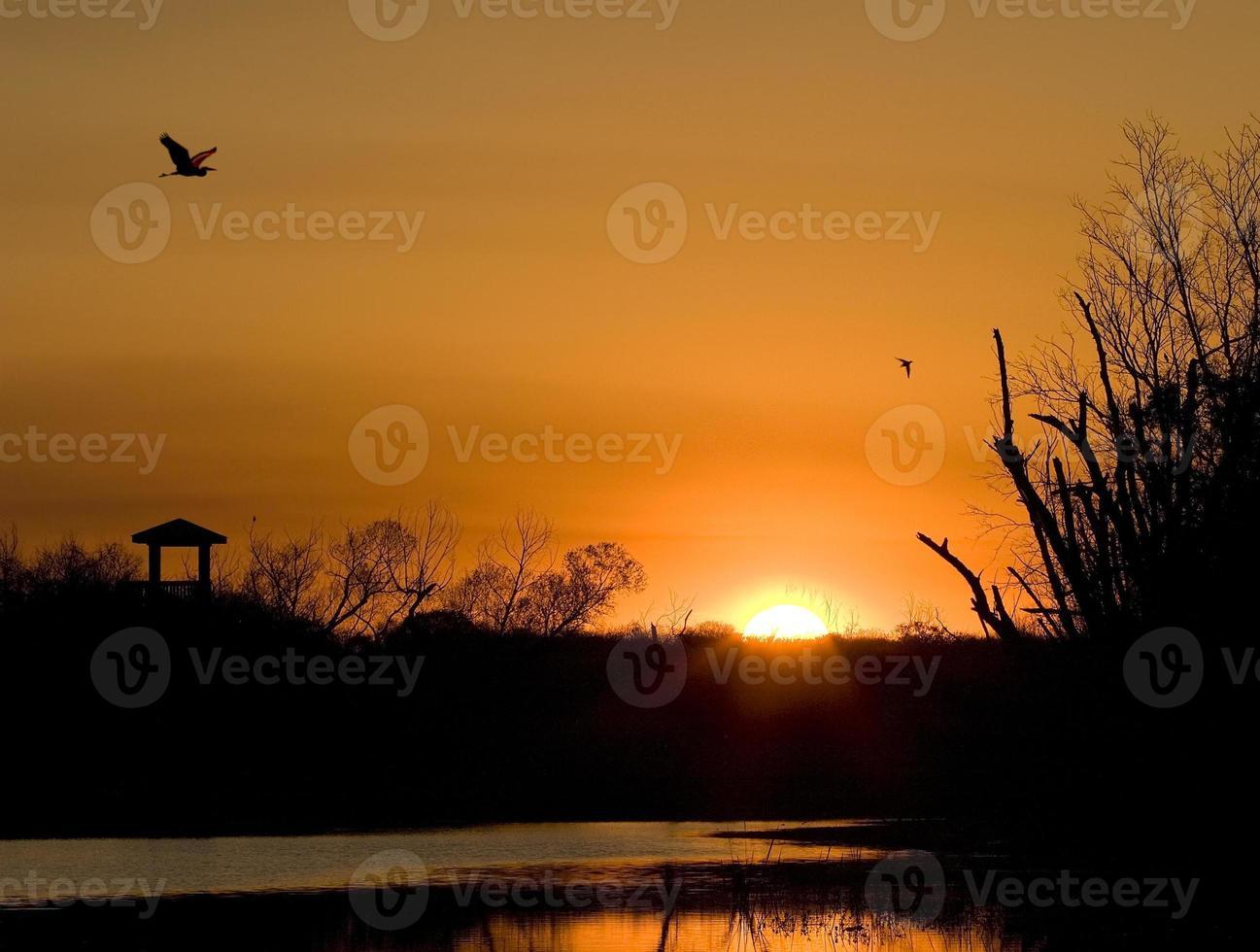 Sunrise at Brazos Bend photo