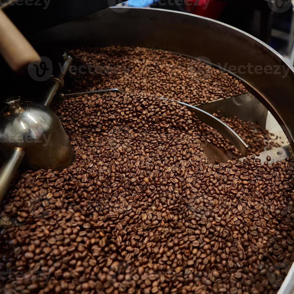Freshly roasted coffee beans photo