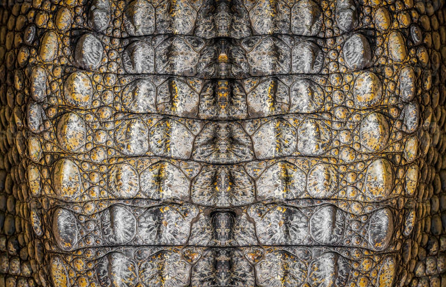 Crocodile leather photo