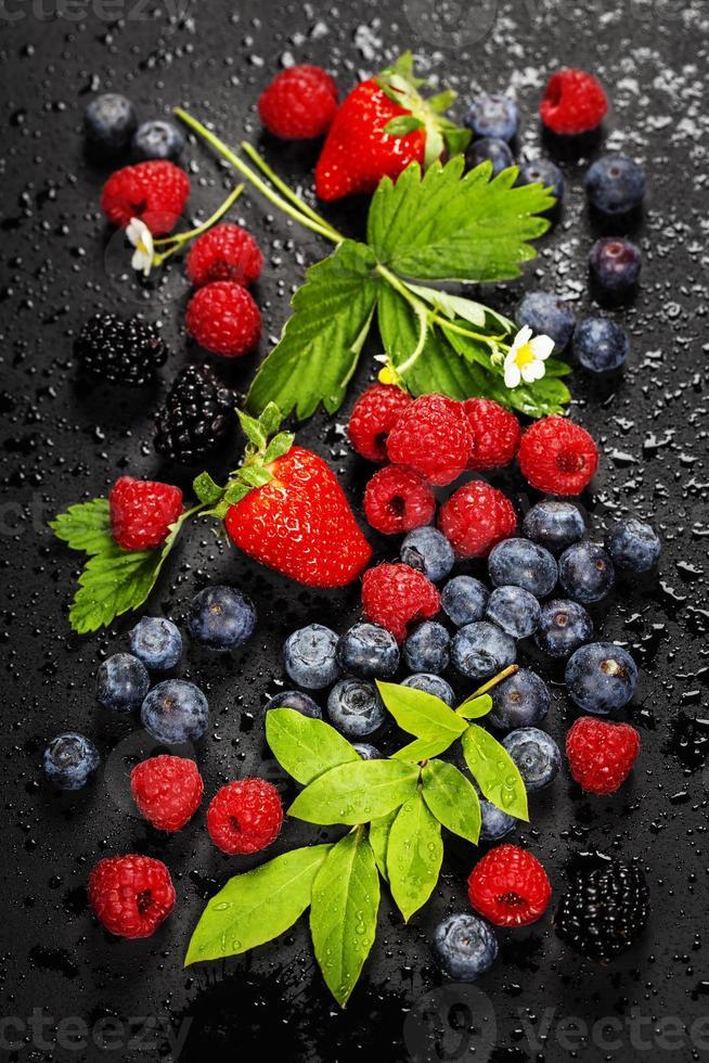Fresh Berries on Dark  Background. photo