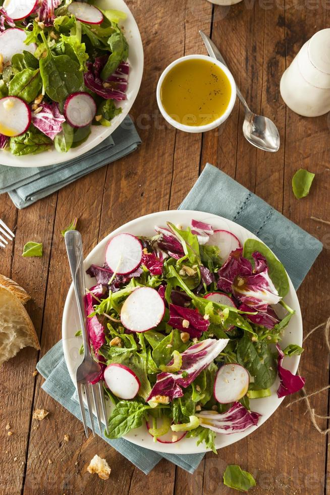 Healthy Homemade Herb Salad photo