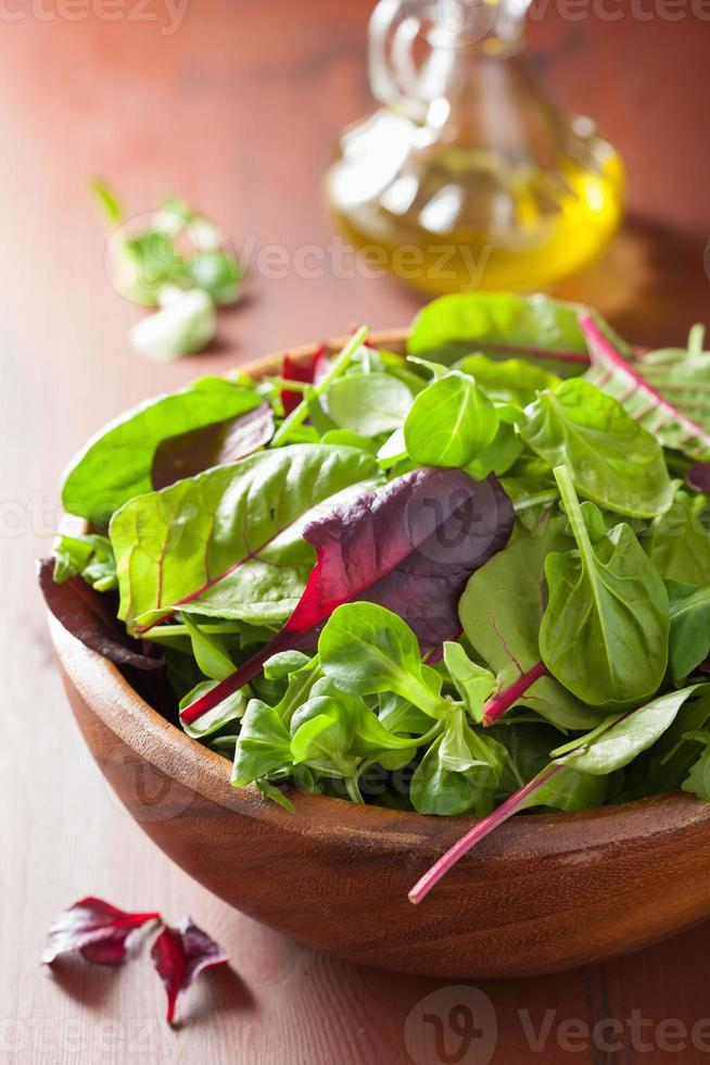 fresh salad leaves in bowl: spinach, mangold, ruccola photo