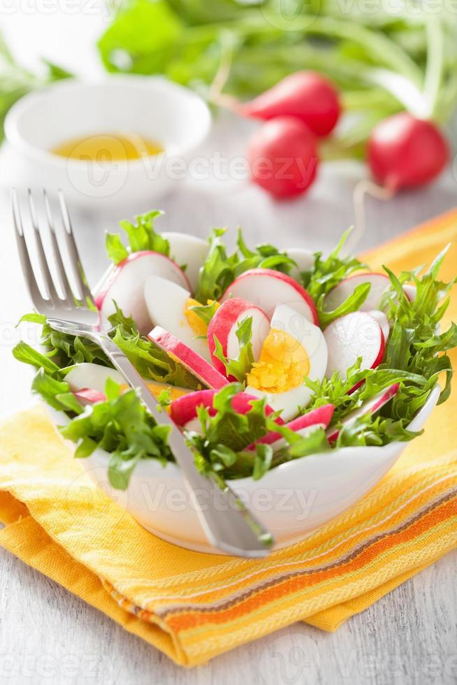 healthy radish salad with egg and green leaves photo