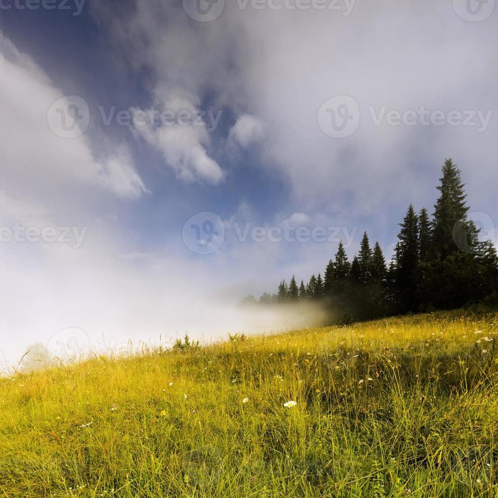 valle de montaña foto