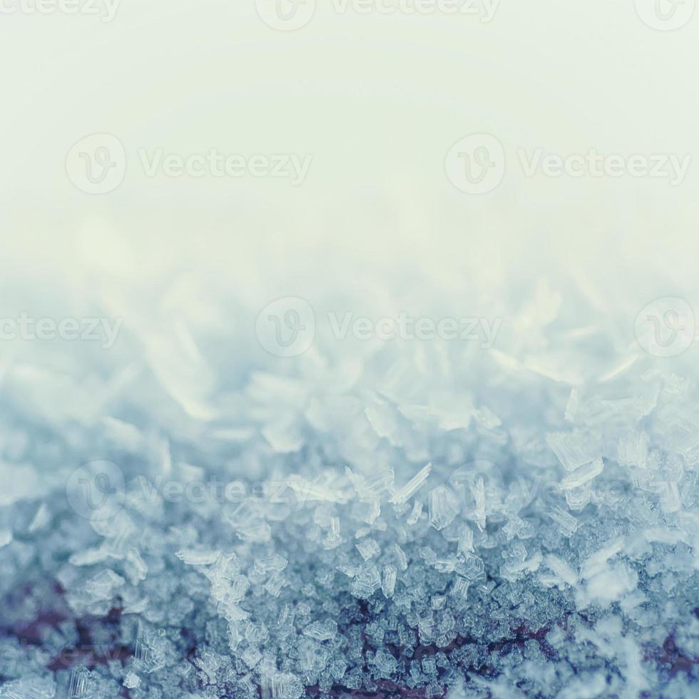 fondo helado de invierno foto