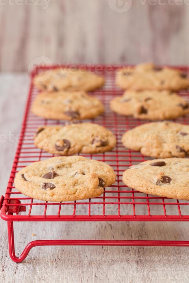 fila de galletas con chispas de chocolate en la rejilla para enfriar foto