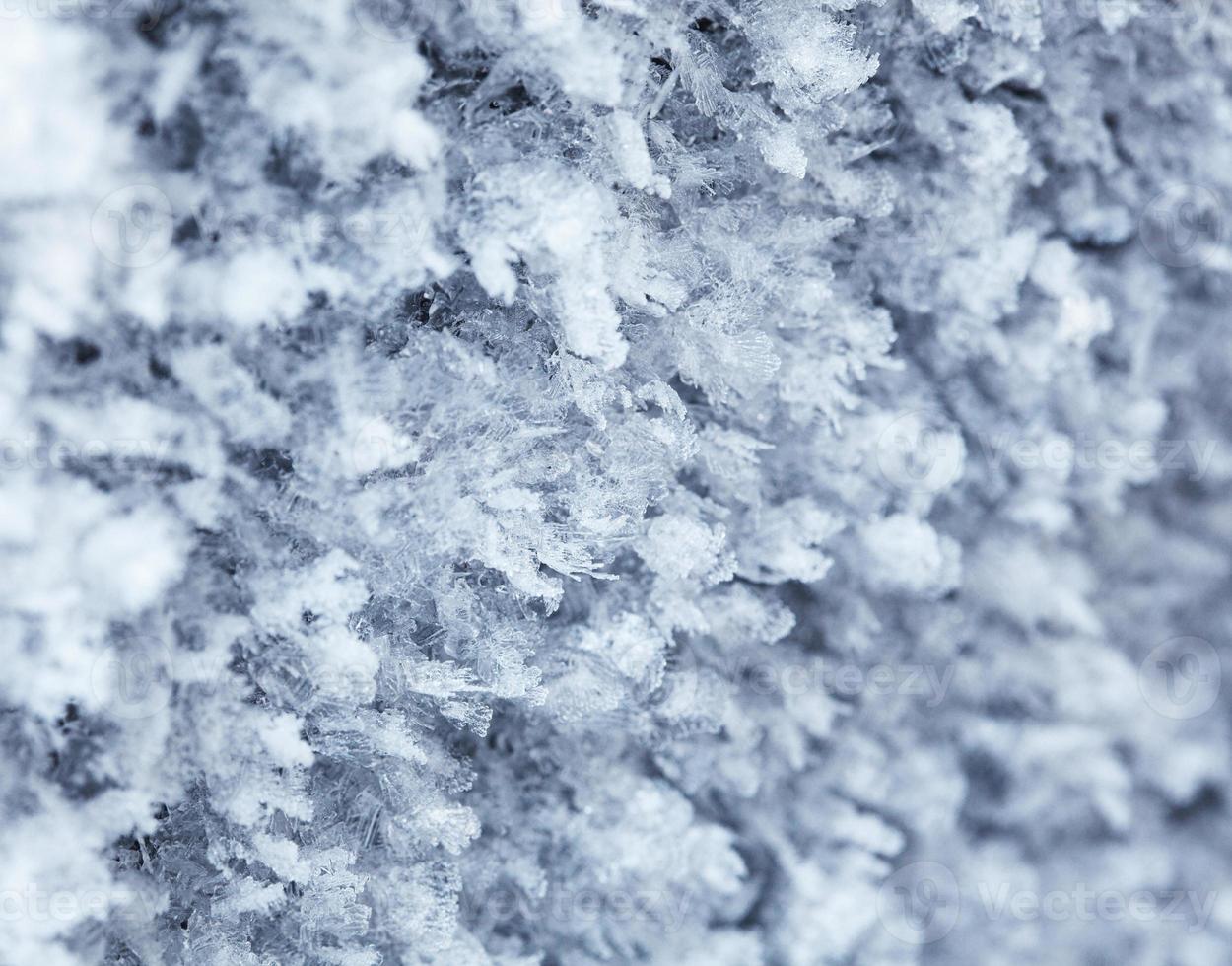patrón de escarcha de invierno foto