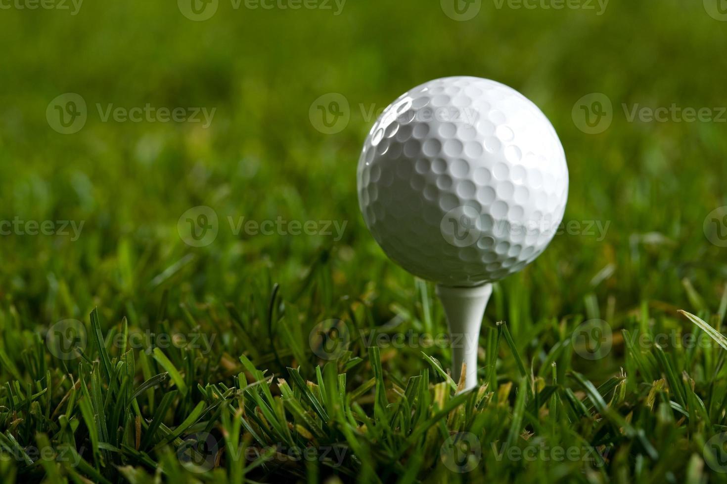 pelota de golf y hierba foto
