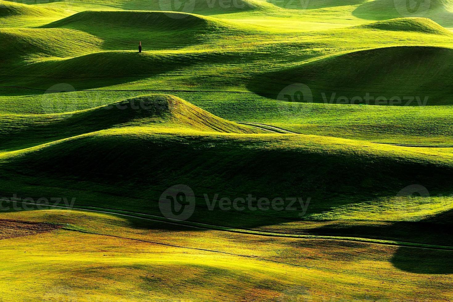lugar de golf foto