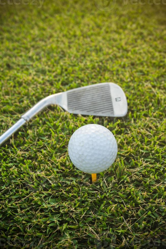 pelota de golf en hierba y club de golf foto
