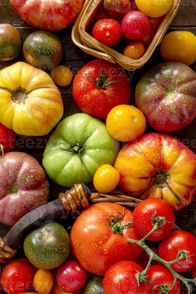 variedad de tomates frescos de la herencia foto