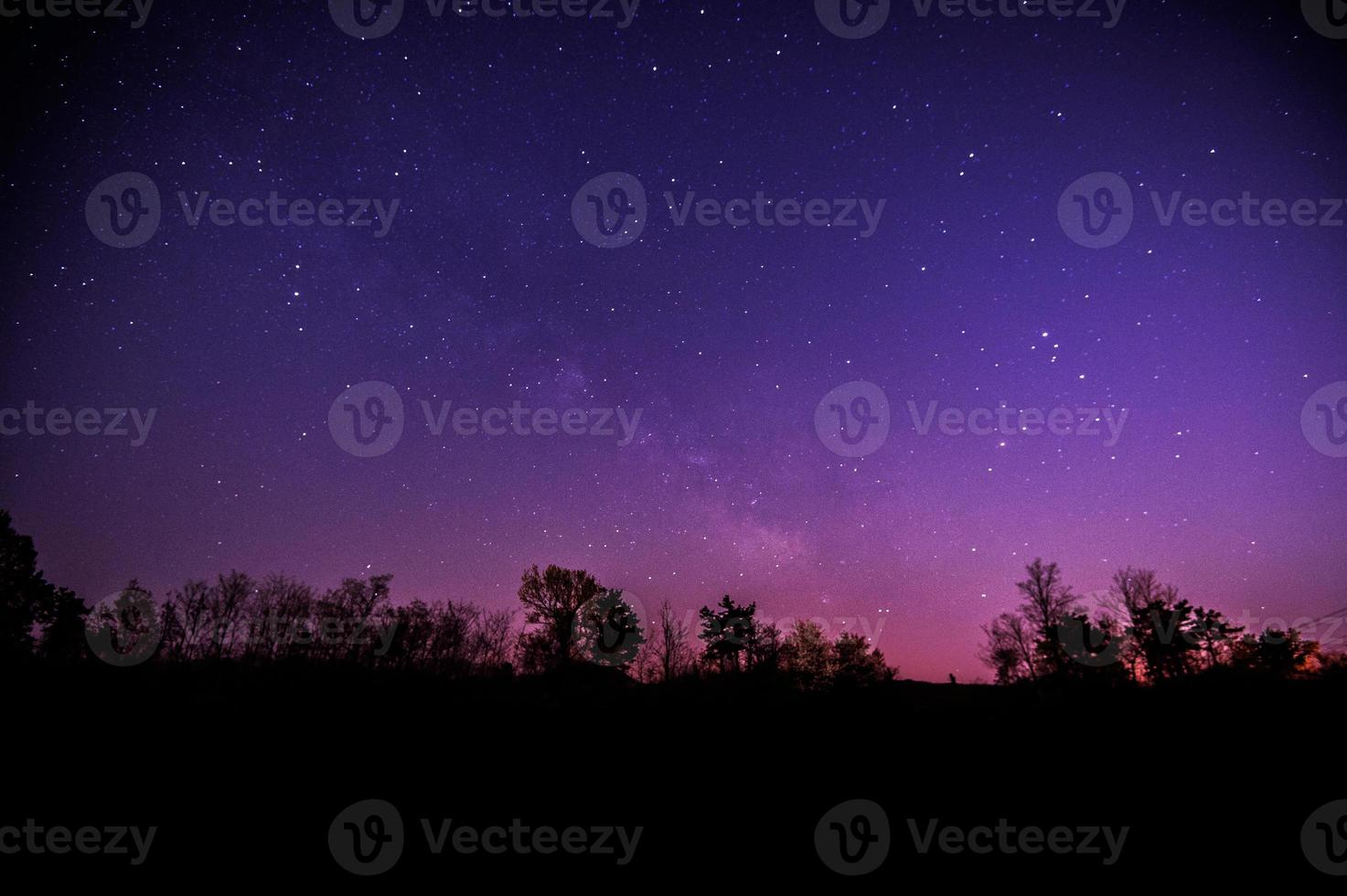 The Milky Way and some trees. photo