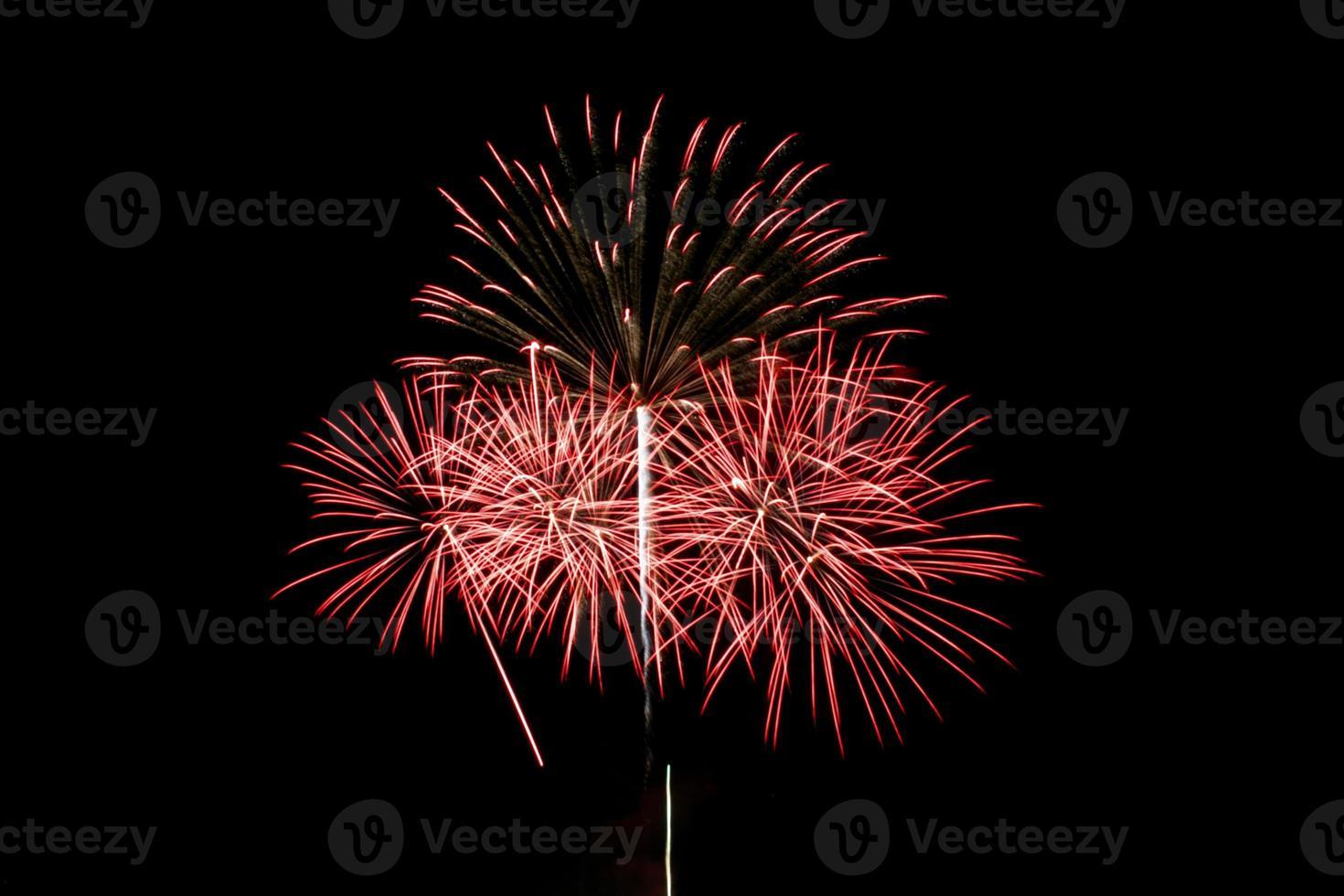 firework02 photo