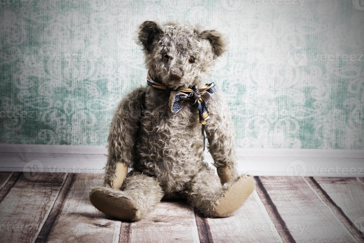Vintage Teddy bear photo