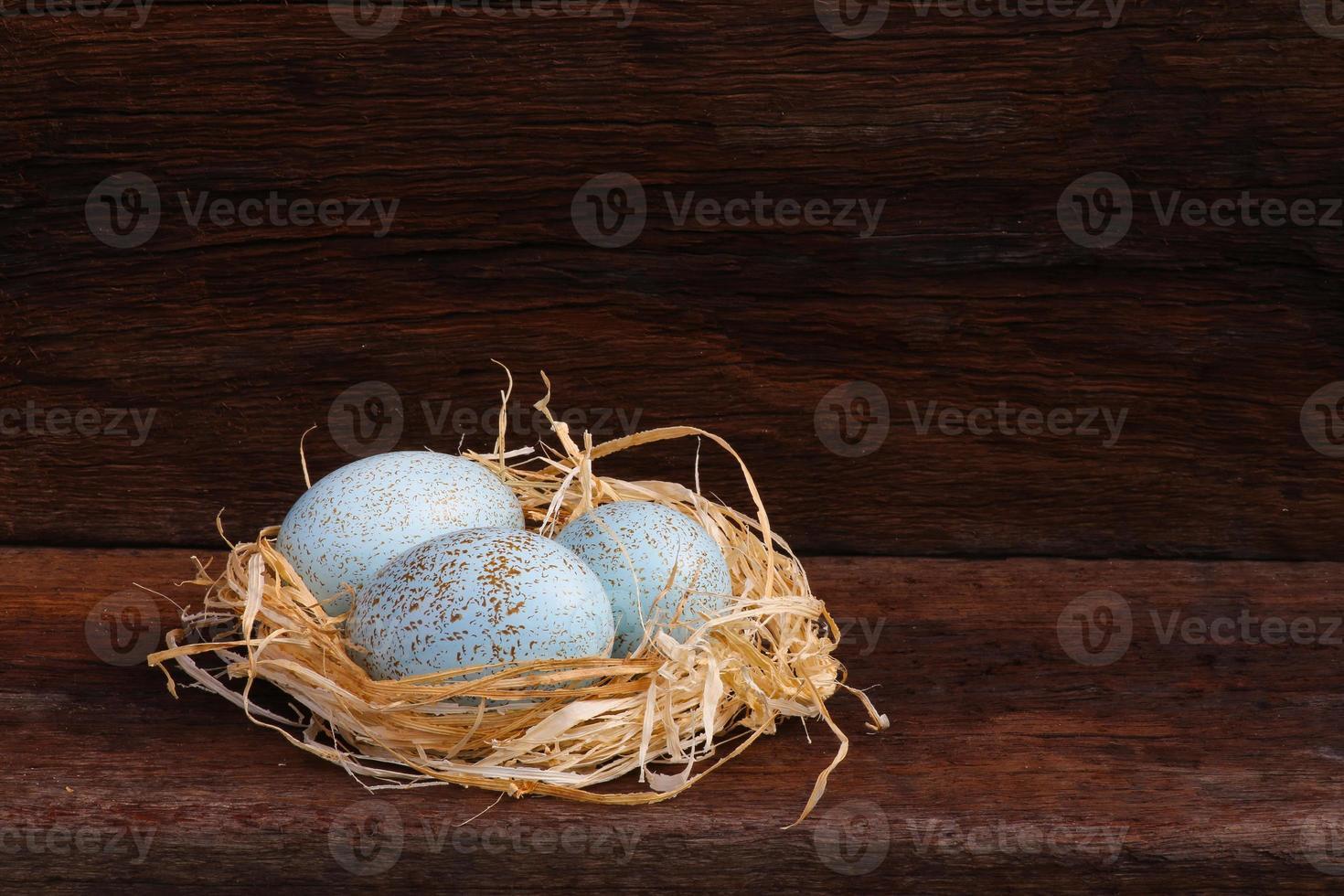 Easter Raffia Nest Duck Eggs on Rough Background photo