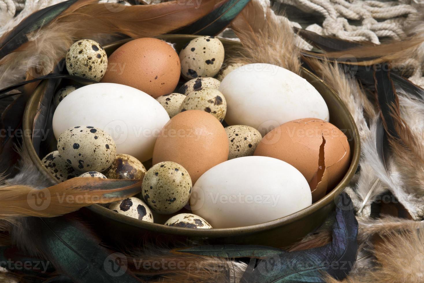 Fresh duck, hen and quail eggs photo