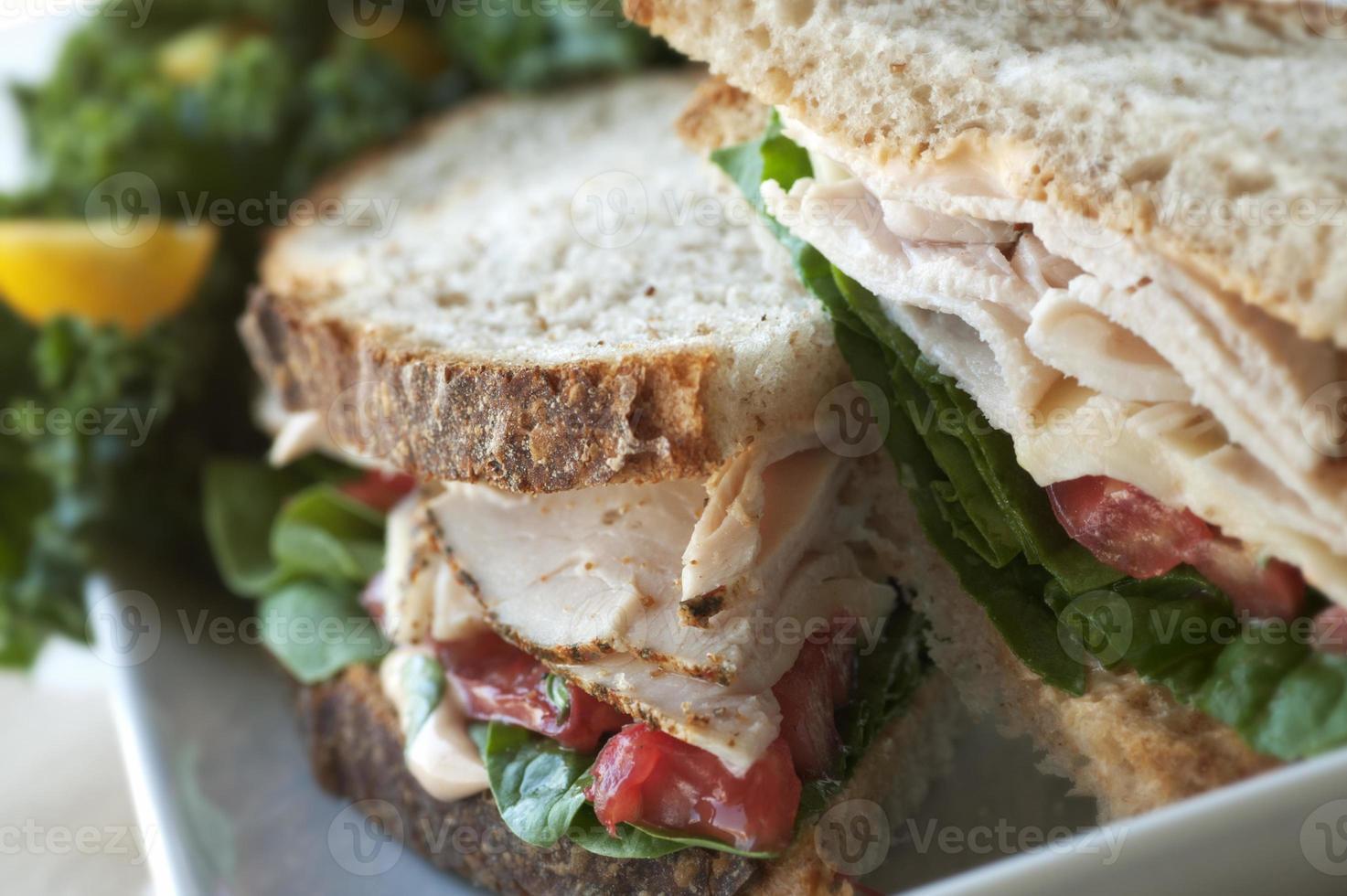 Turkey Sandwich photo