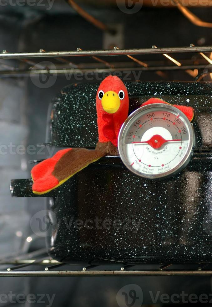 Turkey in Roaster with Meat Thermometer photo