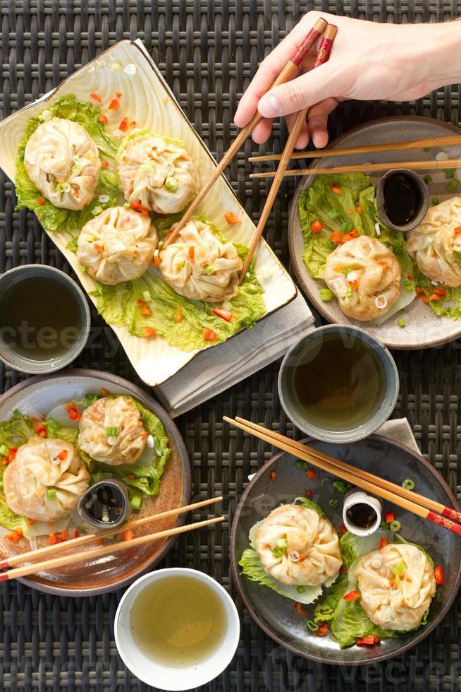 steamed dumplings - hand photo
