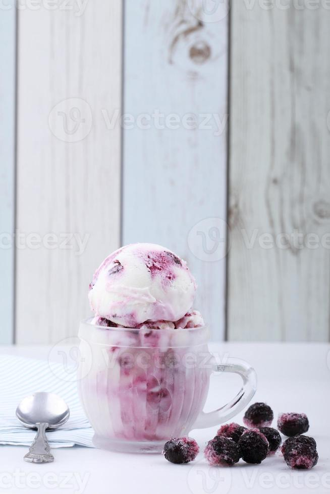blueberry yogurt ice cream photo