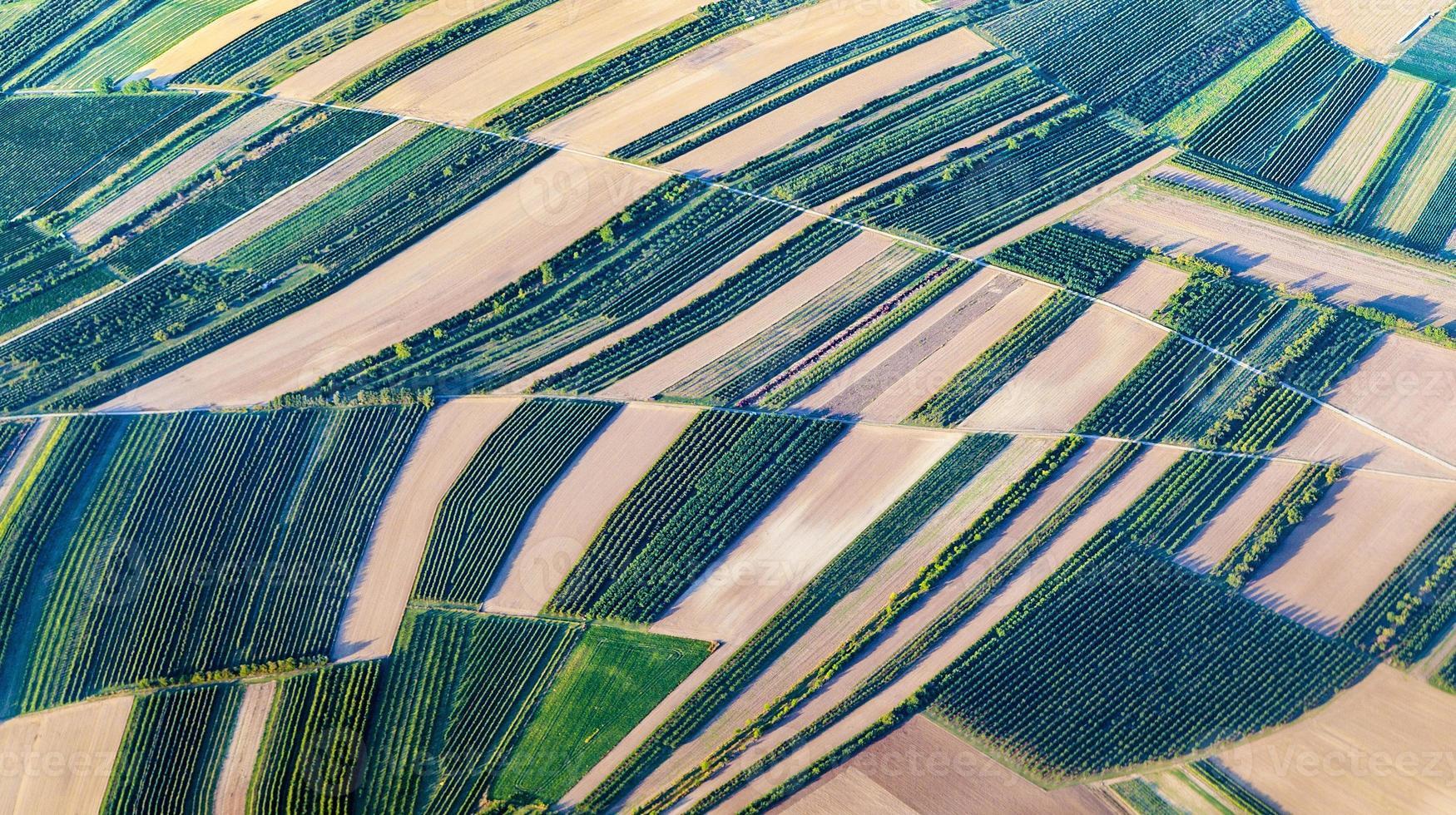 vista aérea de campos verdes y laderas foto