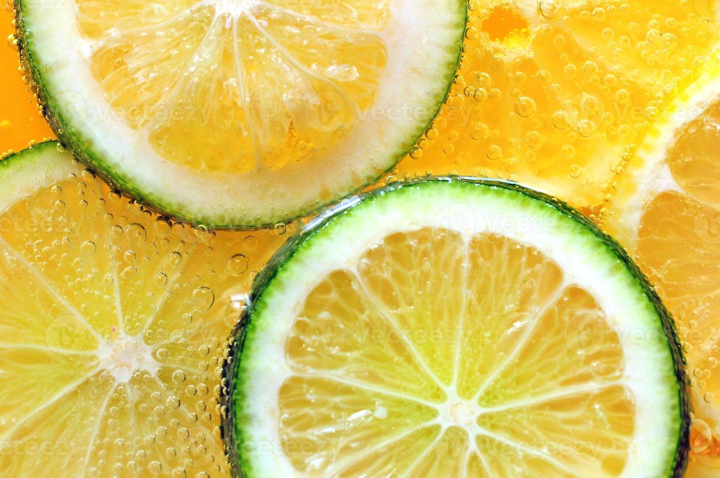 Citrus fruit slices close-up photo