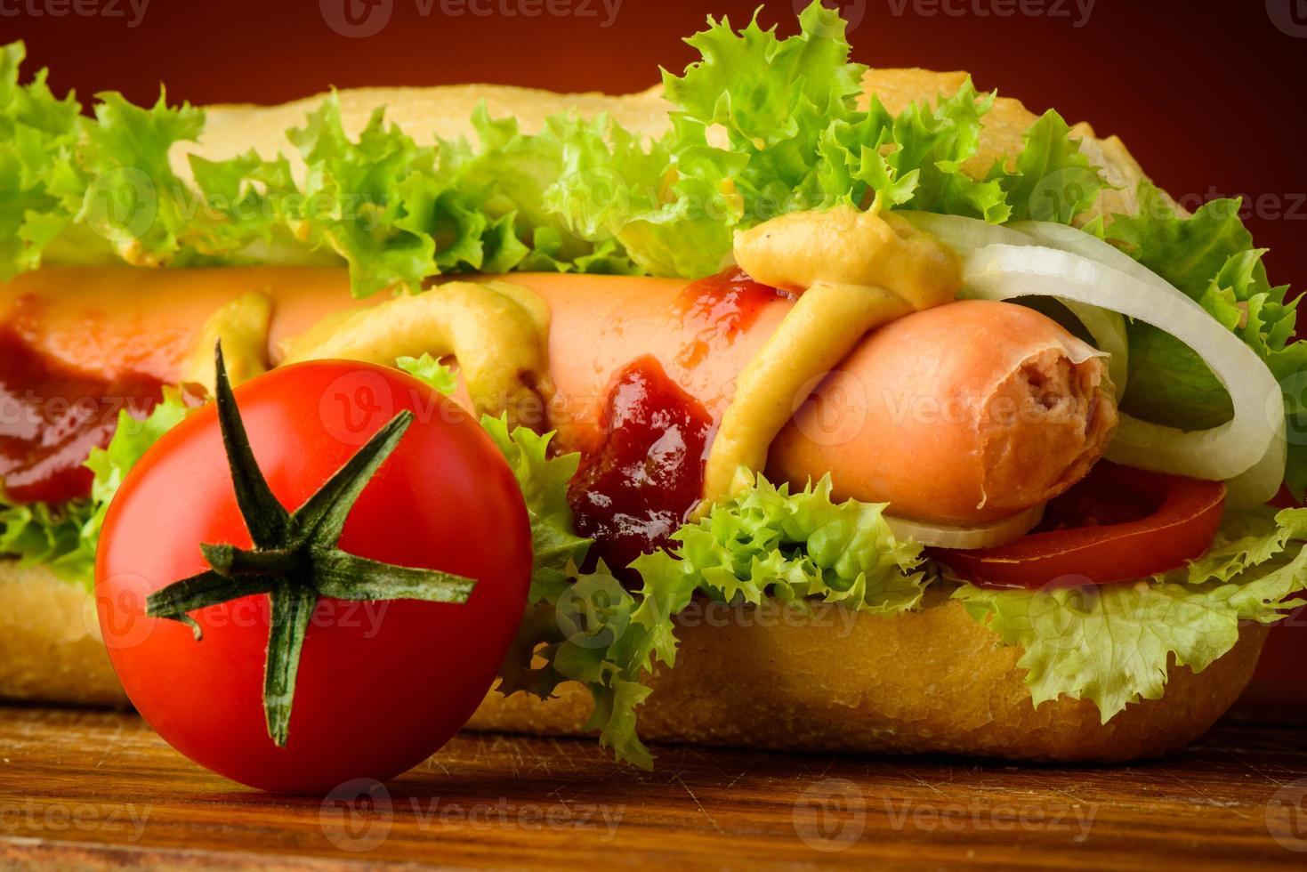 Hotdog closeup photo