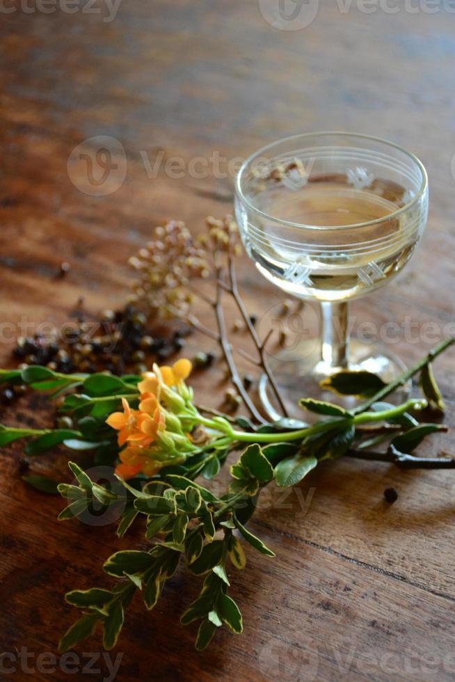 cócteles y productos botánicos foto