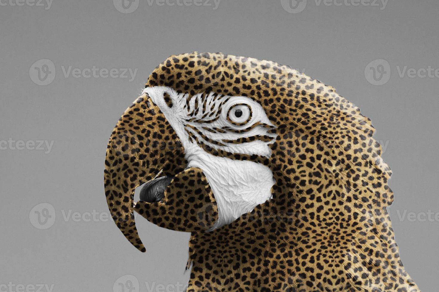 loro guacamayo con estampado de leopardo foto