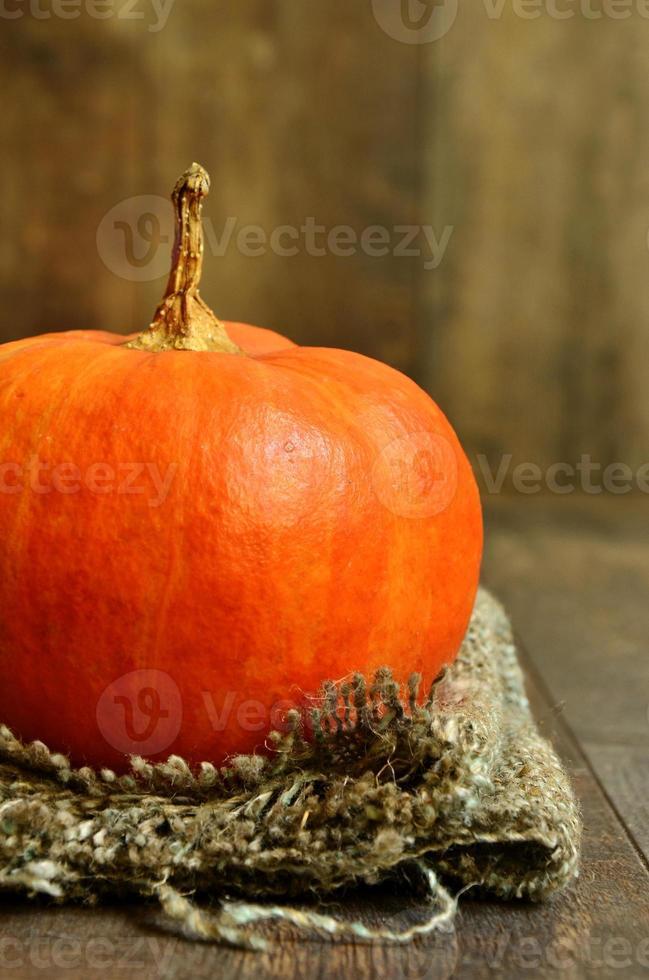 Pumpkin. photo