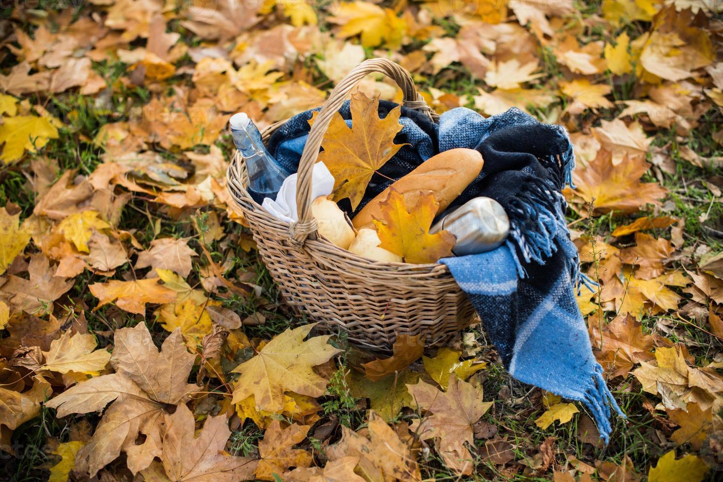 Autumn picnic in park photo