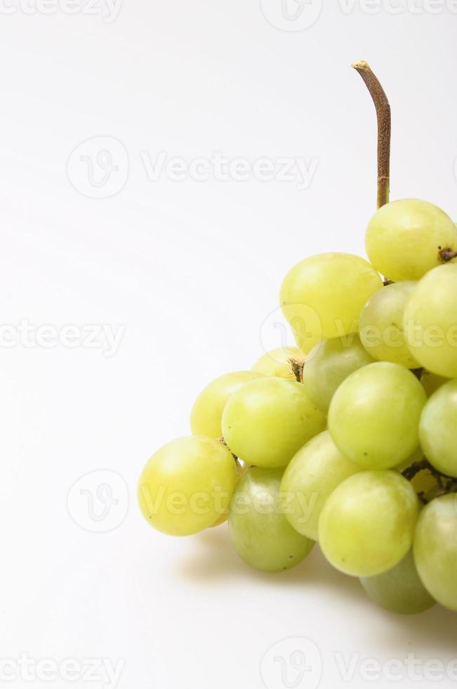 uvas italianas foto