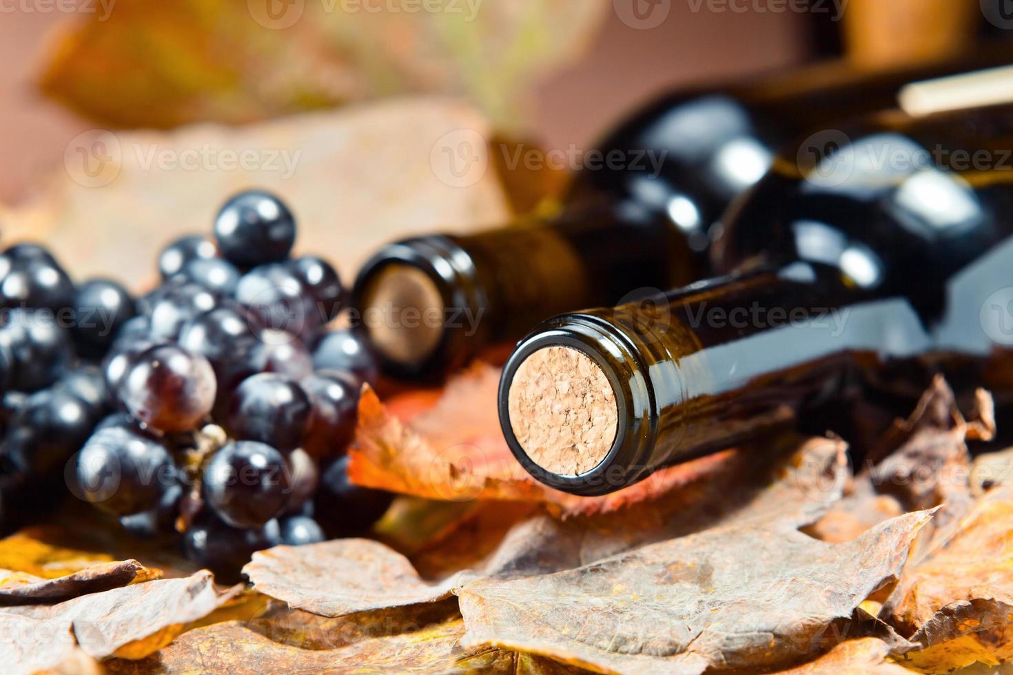 botella con vino foto