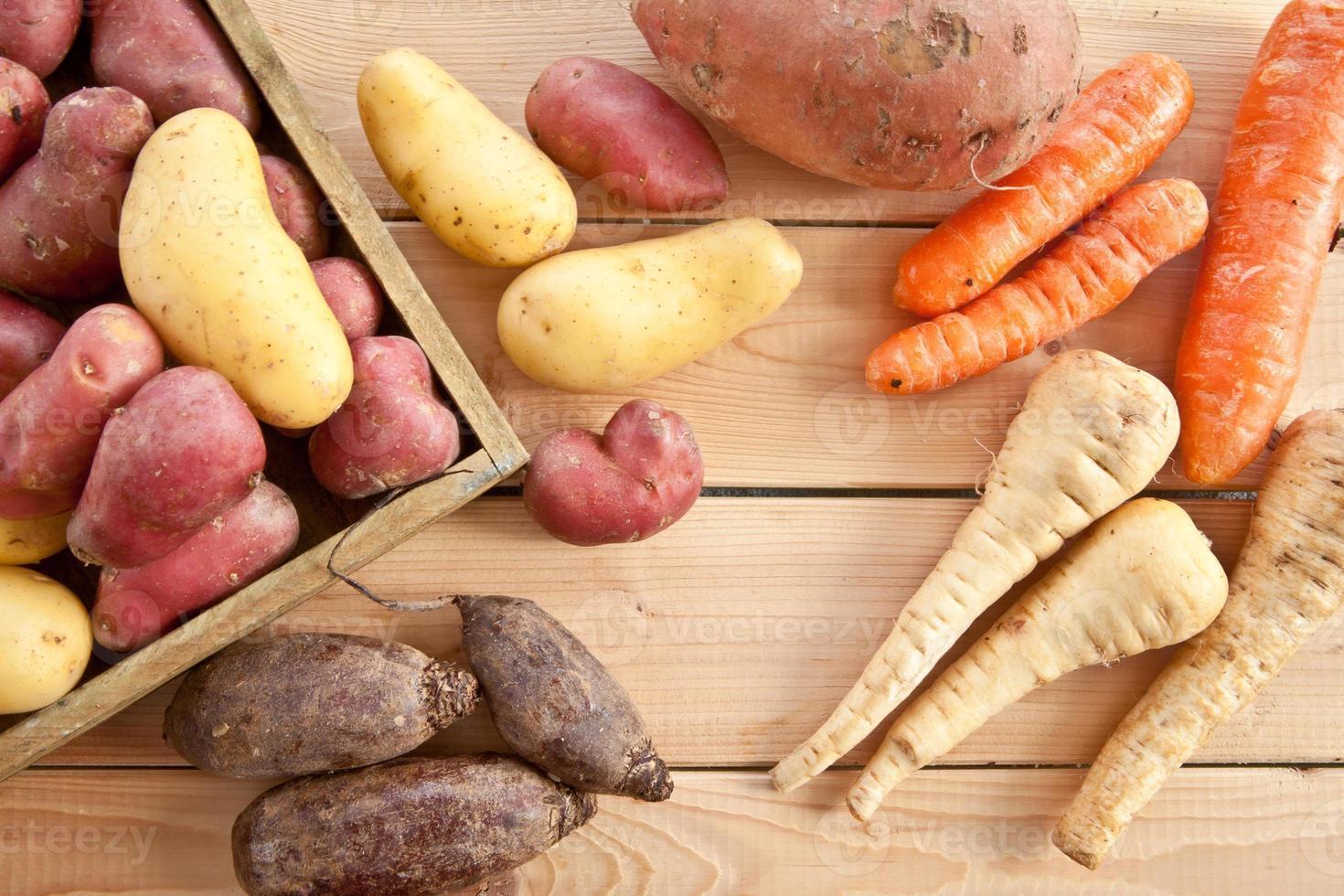 variedad de verduras de invierno foto