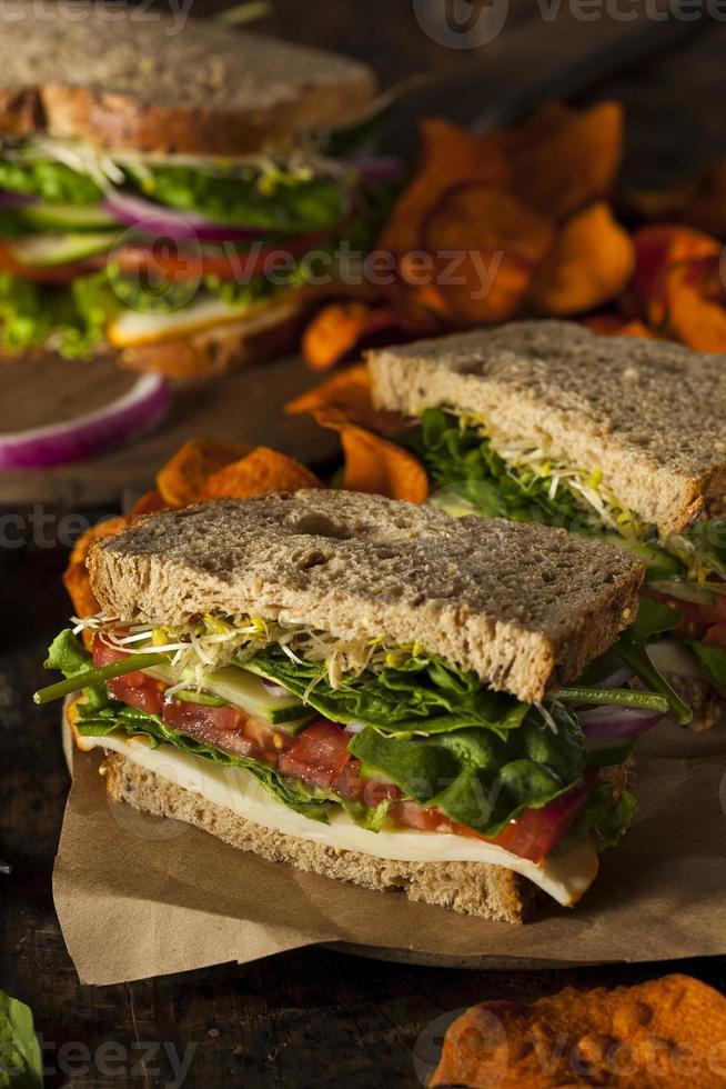 Healthy Vegetarian Veggie Sandwich photo